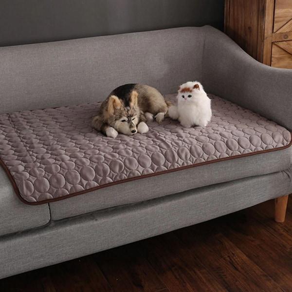 Massimo comfort image